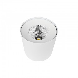 SPOT LED APPARENT ROND COB EPISTAR 30W